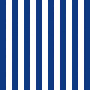 NAVY ΧΑΡΤΟΠΕΤΣΕΤΑ ΡΙΓΕ BLUE NAVY 33x33cm
