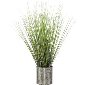 ΦΥΤΟ  GRASS, ΣΕ ΓΛΑΣΤΡΑ H45XD9,5CM