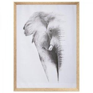 Πίνακας ελέφαντας 58x78cm σε καμβά, λευκό γκρι. Κορνίζα πλαστική, υφή ξύλου.