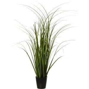 GRASS, ΦΥΤΟ ΣΕ ΓΛΑΣΤΡΑ PVC ΜΑΥΡΗ D9.5xH66cm