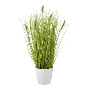 GRASS CAT, ΦΥΤΟ ΣΕ ΚΑΣΠΩ H44cm