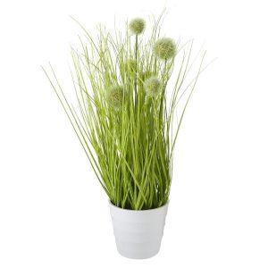 GRASS DANTELION, ΦΥΤΟ ΣΕ ΚΑΣΠΩ H44cm